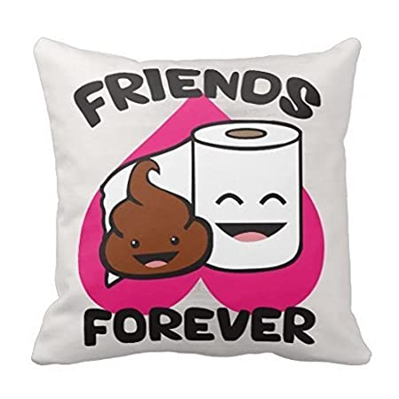 40 X 40 Friends Forever Poop And Toilet Paper Roll Pillows Interesting Decorative Roll Pillows