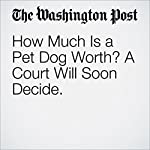 How Much Is a Pet Dog Worth? A Court Will Soon Decide | Karin Brulliard
