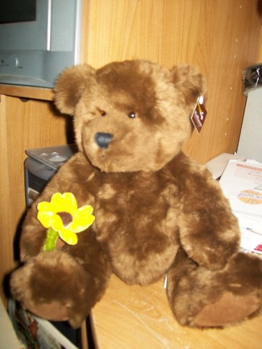 Proflowers Brown Bear W Yellow Sunflower