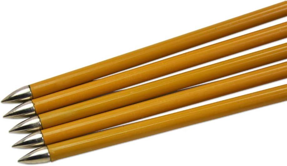 AMEYXGS 12 St/ück Bogenschie/ßen Carbonpfeile 31 Zoll Kohlefaser Pfeile Spine 900 Targeting /Übung Pfeile f/ür Recurvebogen Langbogen Compoundbogen