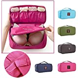 HOUSE OF QUIRK Nylon Multicolor Toiletry Bag
