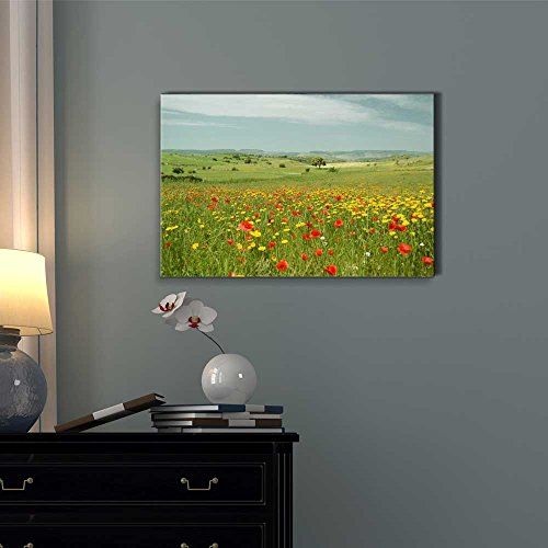 Beautiful Scenery Landscape Flowering Meadow with Poppies and Yellow Daisies Wall Decor ation