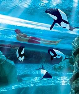 2 Park Aquatica and SeaWorld Ticket 2014 (Adult)