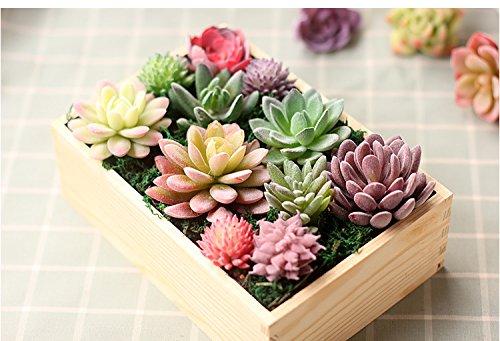 ZST-WZ Artificial Succulents Plants Flowers for Home Decor Indoor Wall Garden DIY Decorations (11 PCS Fake Succulents)