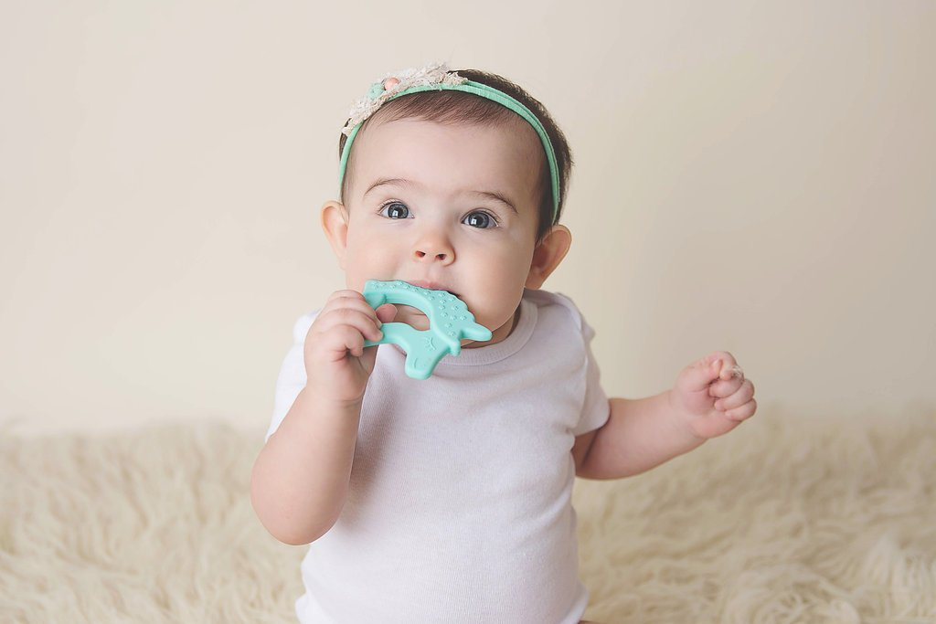 Cactus Lime Teether for Baby Little Teether Teething Toy