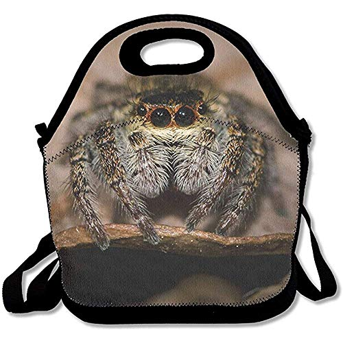 Zofmkgdji Cute Tarantula Spider Animal Lunch Box Tote Bag Cool Handbag for School Office -