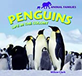 Penguins, Willow Clark, 1448825105