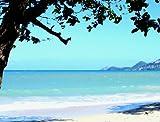 Scenic Trex Beachside Jungle DVD - Virtual Walking, Cycling, Treadmill Workout