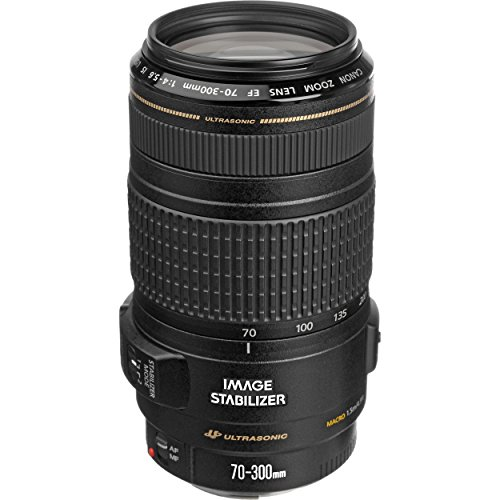 Canon EF 70-300mm f/4-5.6 IS USM Lens for Canon EOS SLR Cameras by Canon