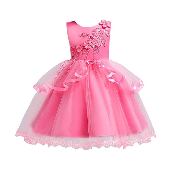 fb7d14c49ee5 Amazon.com  Goodfeng Elegant Girls Embroidery Flowers Ball Gown Kids ...