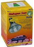Lucky Reptile Halogen Sun 75 Watt