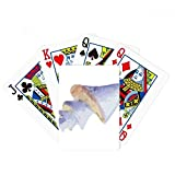 Blue Marine Life Pattern Illustration Poker Playing Card Tabletop Board Game Gift