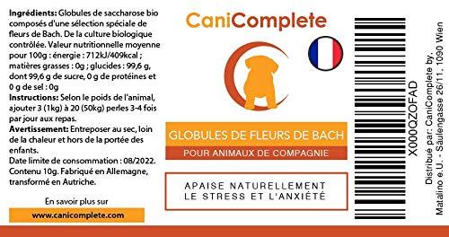 Canicomplete Tranquillisant Pour Chiens Chats Animaux De Compagnie
