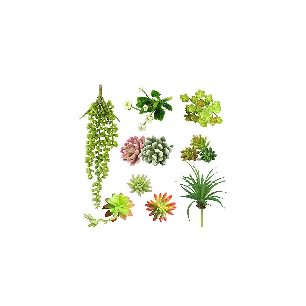 DECONEXT-Pack-of-12-Assorted-Artificial-Succulents-Picks-Textured-Aloe-Faux-Succulent-Pick-Succulent-Stems-Fake-Succulent-Bouquet-String-of-Pearls-Succulent-Faux-Succulent-Floral-Arrangement-Accent