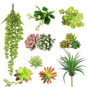 DECONEXT Pack of 12 Assorted Artificial Succulents Picks Textured Aloe Faux Succulent Pick Succulent Stems Fake Succulent Bouquet String of Pearls Succulent Faux Succulent Floral Arrangement Accent 11