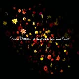 A Hundred Million Suns [Deluxe Edition] [CD + DVD]