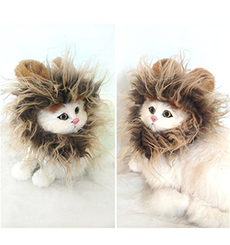 Johnny Cash Halloween Costumes (MLM Pet Costumes Lion Mane Wig Cat Costume and Small Dog Costume with Complimentary Feathered Catnip Toy Brown Headwear Hat with Ears for Halloween, Christmas(pack of 2))