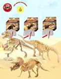Dinosaur Excavation Kits For Kids,Dino Dig Kits T-Rex,Triceratops and Diplodocus,Dinosaur Fossil Excavation Kits ,Children's Popular Science Education Toys - Dinosaur DIY Toys(Three-piece suit)