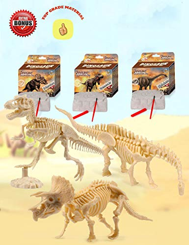 Dinosaur Excavation Kits For Kids,Dino Dig Kits T-Rex,Triceratops and Diplodocus,Dinosaur Fossil Excavation Kits ,Children's Popular Science Education Toys - Dinosaur DIY Toys(Three-piece suit) (Dinosaur Fossil Making Kit)