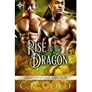 Rise of the Dragon (M/M Fantasy Romance) (The Dragonstone Chronicles Book 1)