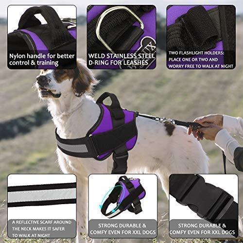 Buy no pull harness for small dogs