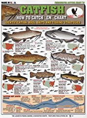 Catfish how to catch # 13 both novices and Pro's all over the world find something interesting in tight lines charts. All charts are 3mm Laminated to ensure 100% percent waterproofing, and can be rolled up to fit into any tackle box. These ch...