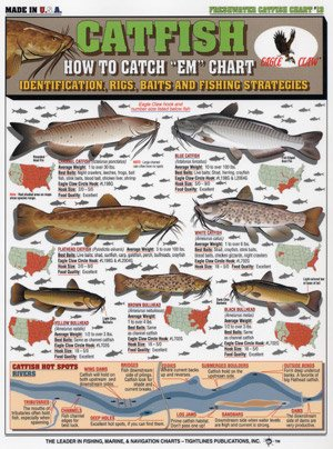 Tightline Publications 129315-Maurice Catfish How to Catch # 13 Fishing Equipment