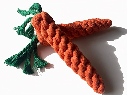 Dog Chewing Rope Carrot Shaped