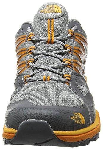 Hauteur De Face Zinnia gris Le Griffon Multicouleur Hérisson Hommes Faible Chaussures Ii Fastpack Gtx De Orange Lite Randonnée Nord xwF41CBqw