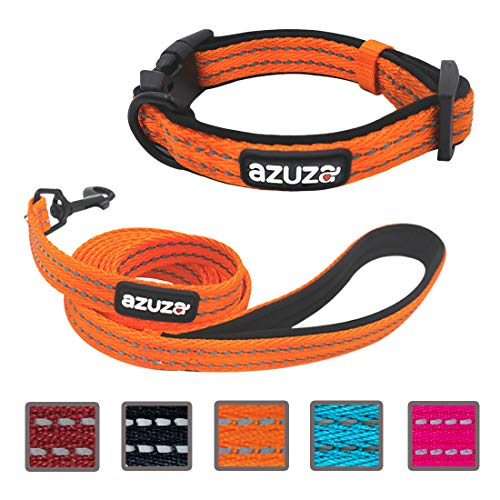 azuza Durable Padded Dog Leash and Collar Set,Reflective Strip Extra Safe and Comfy for Large Dogs, Orange