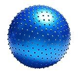 Gobuy Anti-Burst Massager Yoga Ball Balance Stability Slip Resistant Exercise With Pump