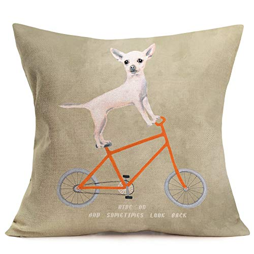 Aremazing Animal Dog Throw Pillow Covers Cotton Linen Chihuahua Riding a Orange Bicycle with Funny Letters Cushion Cover Pillow Case Home Sofa Pillowslip 18''x18'' (Chihuahua Riding a Bicycle)