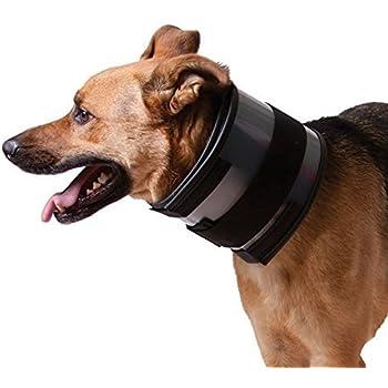 "Amazon.com : BiteNot Collar, 6"" W x 27"" L : Pet Recovery ..."