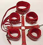 Adult Furry Red Leather Bondage Slave Master BDSM