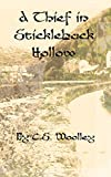 A Thief in Stickleback Hollow (The Mysteries of Stickleback Hollow Book 1)