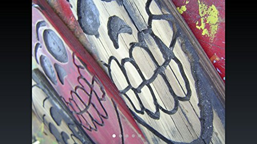 Wooden Skull wall art Set of 3 skulls Routed and Painted - each piece measures 8-1/2 X 3-1/4