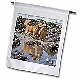 3dRose fl_140452_2″ Two Golden Retriever Dogs at A Beach – Zandria Muench Beraldo Garden Flag, 18 x 27