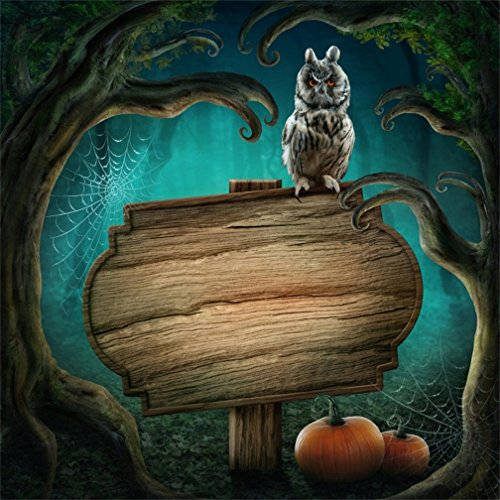 AOFOTO 6x6ft Halloween Horror Night Background Scary Forest Pumpkin Spider Web Devil Weird Tree Owl Wooden Board Photography Backdrop Grimace Photo Studio Props Kid Child Portrait Vinyl Wallpaper
