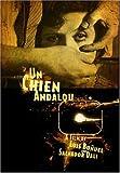 Chien Andalou [DVD] [Region 1] [US Import] [NTSC]