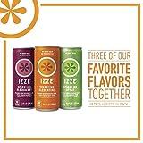 Izze Sparkling Juice Variety Pack, 8.4 Ounce (Variety Pack of 48) Izze-2u