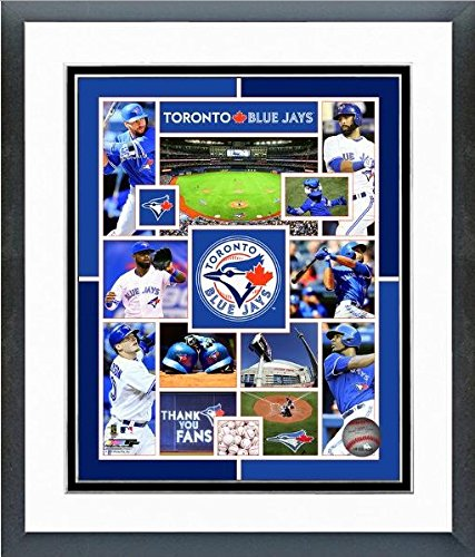 (Toronto Blue Jays 2015 MLB Team Composite Photo (Size: 12.5