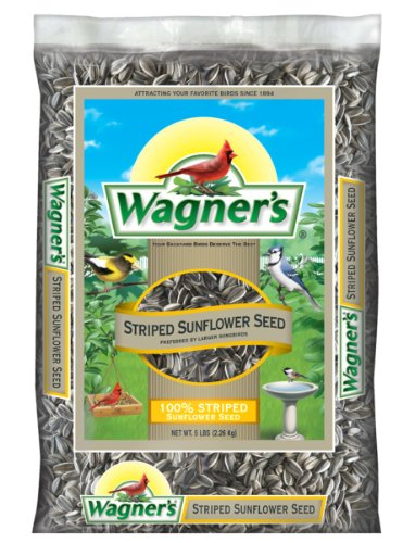 51qgJjYvZwL - Wagner's 62028 Striped Sunflower Seed, 5-Pound Bag