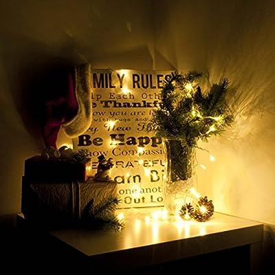 Aleko B30LEDWWT 30 LED 10' Battery Operated String Christmas Lights, Warm White