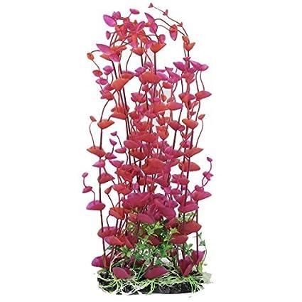 Amazon.com: eDealMax acuario plástico Césped Artificial decoración Vegetal 41cm Altura Fucsia Rojo: Pet Supplies