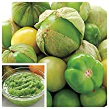 verde tomato seeds - tomato! Yes, this is where salsa verde comes from! Toma verde Tomatillo