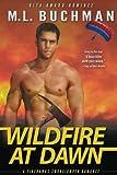 Wildfire at Dawn (Firehawks Smokejumpers) (Volume 1)
