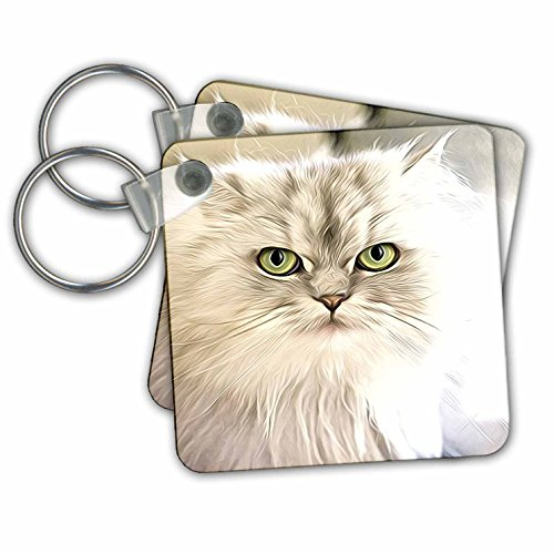 3dRose Key Chains Image of Painting of Persian Cat, Set of 2, 2.25 x 2.25 (kc_255365_1) - Persian Cat Keychain