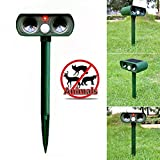 Solar Animal Repeller, Cat Repellent Ultrasonic with Motion Sensor, Power Pest Repeller Outdoor Waterproof Dog Mice Bird Deterrent Spike for Yard, Lawn, Garden with LED Flashing Light, Green