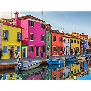 1000 Piece Puzzle for Adults - Colorful Venice Jigsaw Puzzle