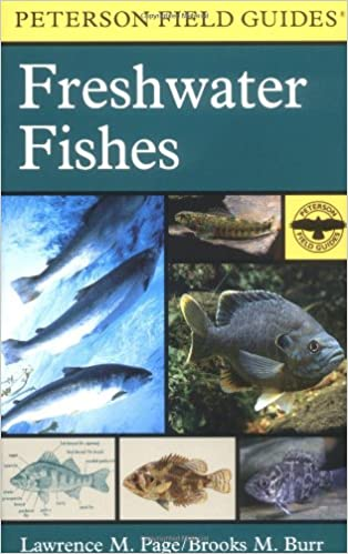 peterson field guide to freshwater fishes second edition peterson field guides